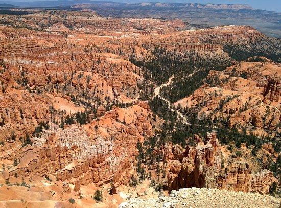 Canyon Trail Rides : Bryce Canyon