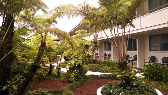 Hilo Seaside Hotel: Garden Wing