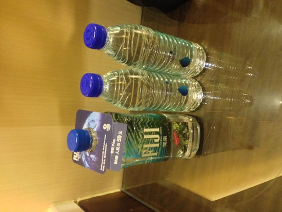 Shanghai Marriott Hotel Pudong East: Water