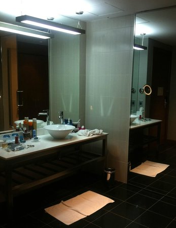 Aloft Abu Dhabi: Accessible bathroom sink area separate