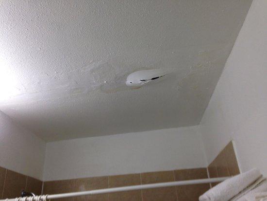 University Inn: Ceiling