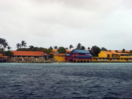 Divi Flamingo Beach Resort and Casino: Divi Resort taken from the sea.