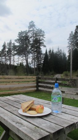 Kinlochlaggan, UK: A picnic lunch in the Pinwood front garden