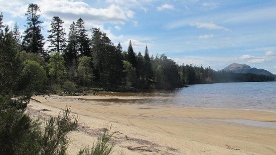 Kinlochlaggan, UK: Part of the beach at Loch Laggan
