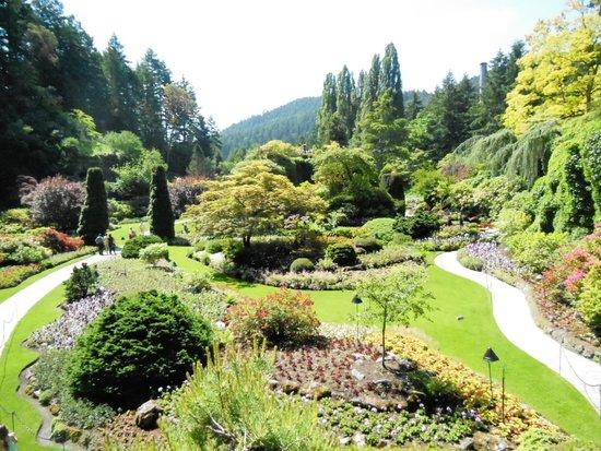 The Butchart Gardens : Beautiful!