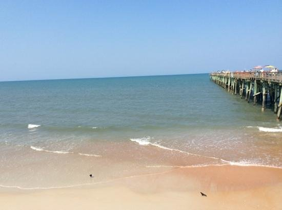 Flagler Beach, FL: View from Flagler