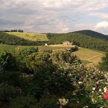 Fattoria Tregole: The Chianti Vista
