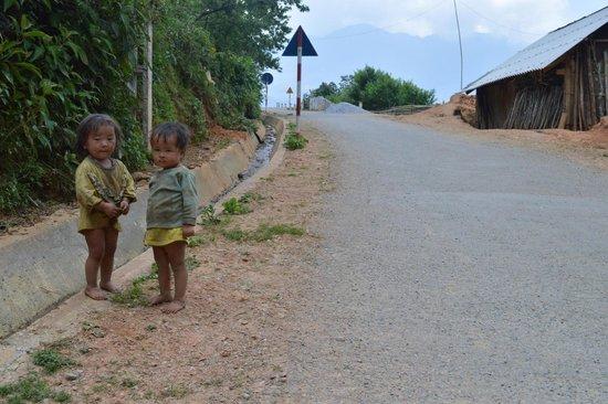 Viet Sapa Travel : Sapa
