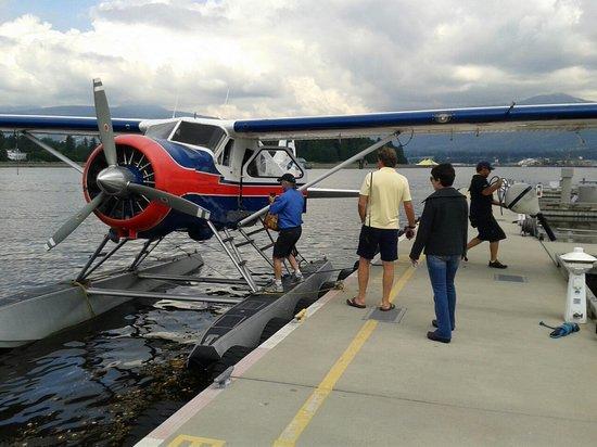SaltSpring Air Tours : Beaver!