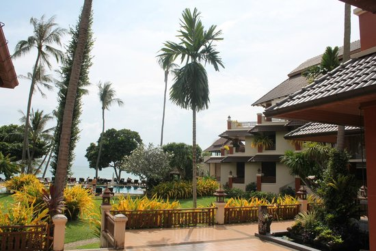 Aloha Resort: Территория отеля