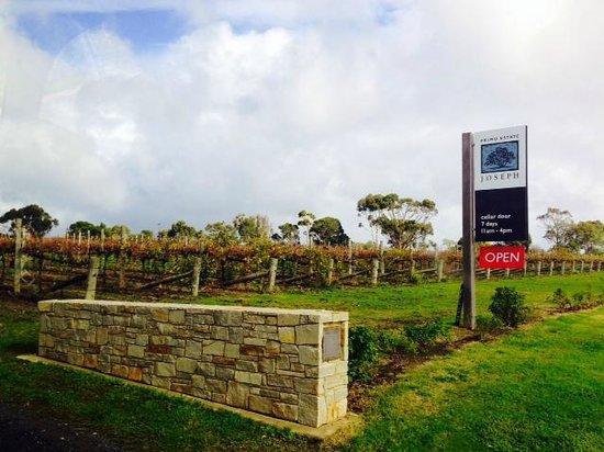Wine Divas Tour: Primo Estate