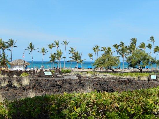 Waikoloa Beach Marriott Resort & Spa: Paradise