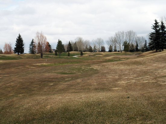 The Willows Golf and Country Club: CAN-AB-SASKATOON-WILLOW_GOLF-1