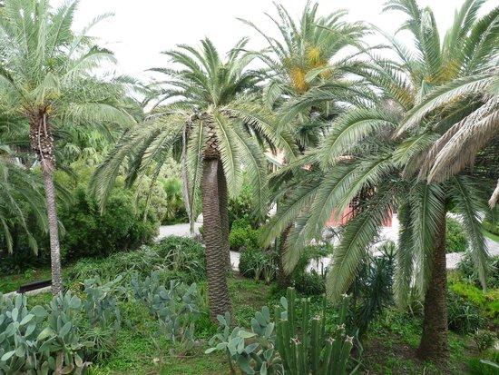 Pestana Palace Lisboa Hotel & National Monument: Jardin