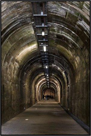 La Coupole : Tunnels