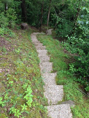 Glenwood, AR: Stairs to river