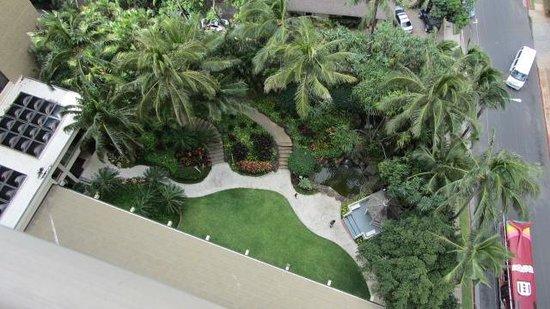 Hilton Waikiki Beach: Nice gardens at hotel near bar