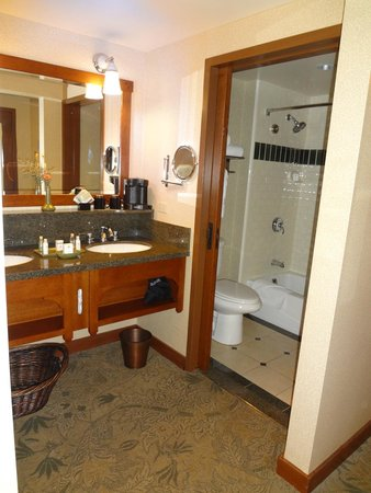 Doubletree Suites by Hilton Hotel Anaheim Resort - Convention  Center: バスルーム