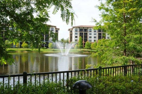 Sheraton Vistana Resort - Lake Buena Vista: Fountain