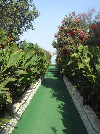 Bin Majid Beach Resort : Дорожка, ведущая на пляж