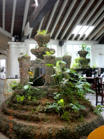 Closenberg Hotel: Decor of corals and fish tank in the dining area and lobby