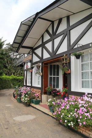 Glendower Hotel : Hotel View from the Garden