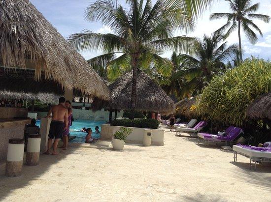 The Reserve at Paradisus Punta Cana: Vista da piscina da reserva