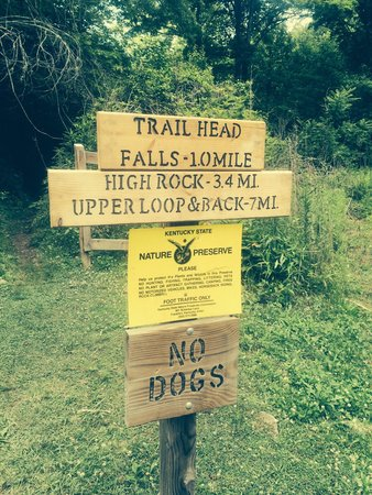 Bad Branch Falls State Nature Preserve: Sign at beginning of the trail.