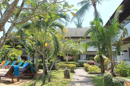 First Bungalow Beach Resort: Территория отеля