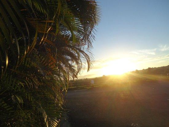 Hacienda El Jibarito: Amaneciendo en mi isla