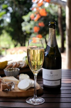 Pipers Brook, Australia: Delamere Vineyards Blanc de Blanc 2008