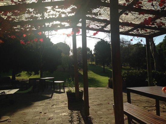Delamere Vineyards: Cellar Door deck and gardens