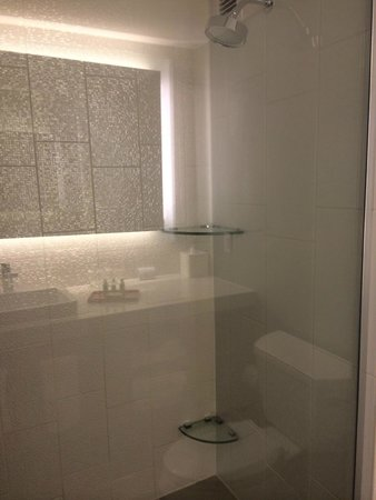Cambria hotel & suites Washington DC Convention Center : Shower in Queen Suite