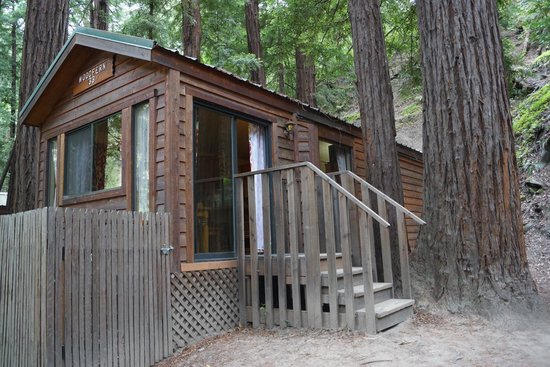 Fernwood Resort: The cabin