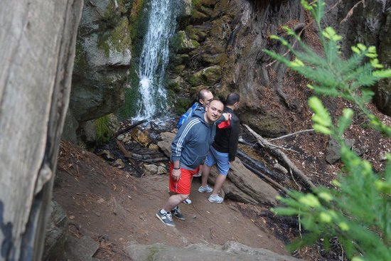 McWay Falls: the other side of the fall