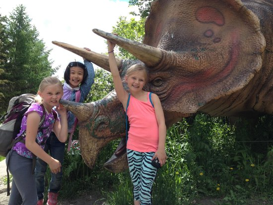 The Calgary Zoo : Triceratop