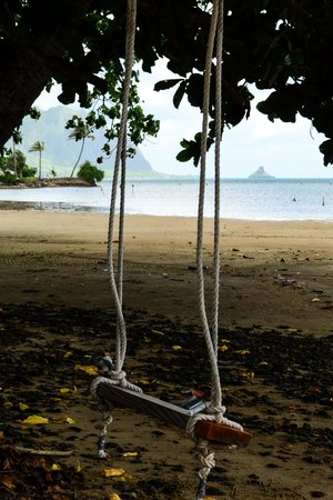 Oahu Photography Tours: Rope swing on beach