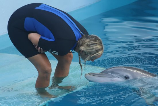 Clearwater Marine Aquarium : Winter