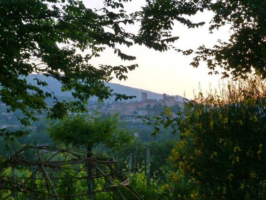 Villa San Raffaello: view