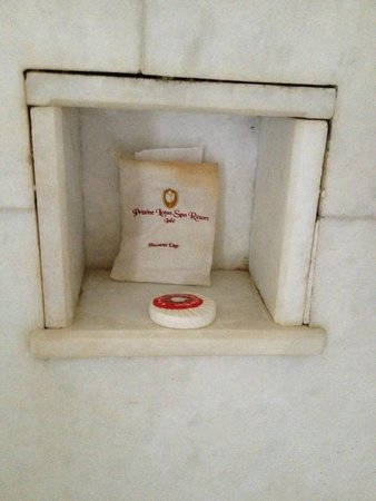 Pristine Lotus Spa Resort : Mildew and stained toiletry bag in bathroom