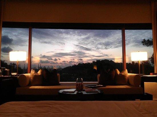 Capella Singapore : Nice View