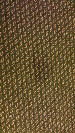 La Quinta Inn & Suites Ft. Pierce: carpet in famiyl room