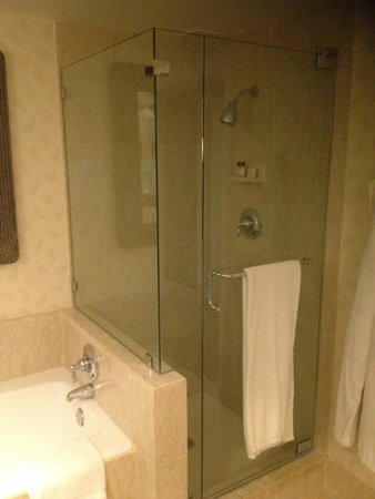 Park Hyatt Aviara Resort: shower