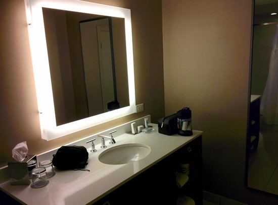 Wyndham Grand Chicago Riverfront: Modern bathroom