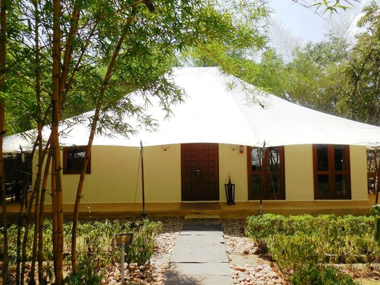 Tuli Tiger Resort: the lodge
