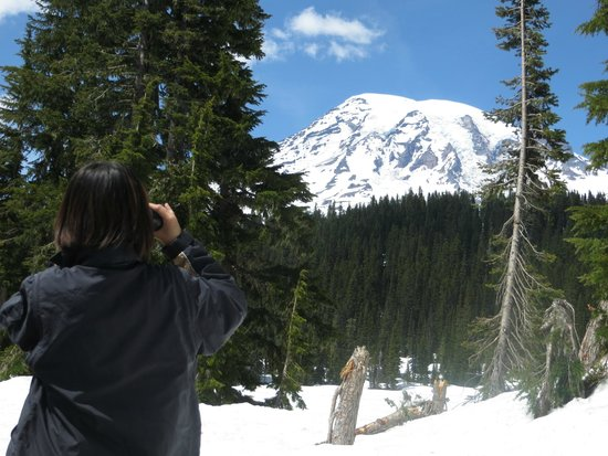 Discover Nature, LLC - Private Tours: Getting a close up view of Mt. Rainier's many glaciers