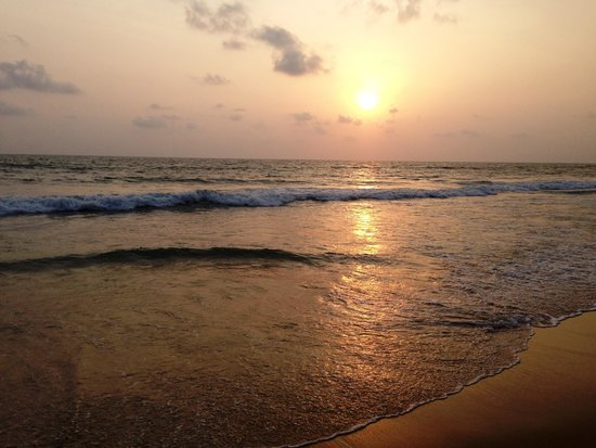 Hotel Goan Heritage: Sun set view from Hotel
