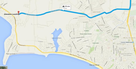 Arboretum Lussich : Only about 20 minutes away from Punta del Este