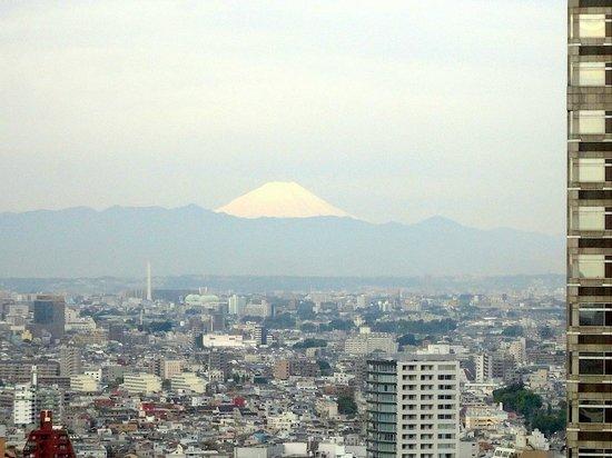 Keio Plaza Hotel Tokyo: Panorama da janela do quarto: Monte Fuji