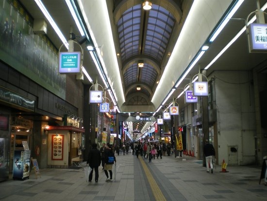 Tanukikoji Shopping Street: アーケード